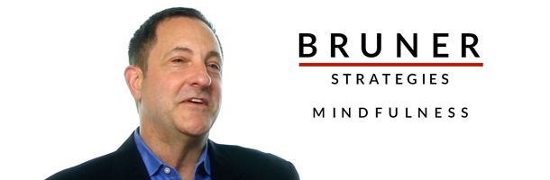 Bruner Strategies Videos