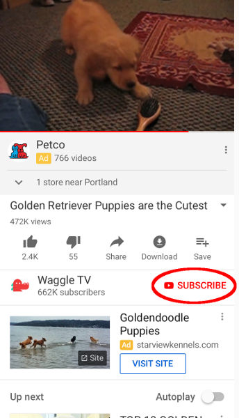Subscribe button location